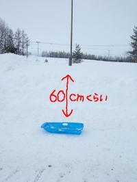 090114積雪