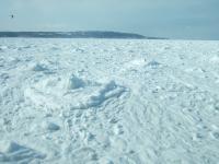090226流氷④