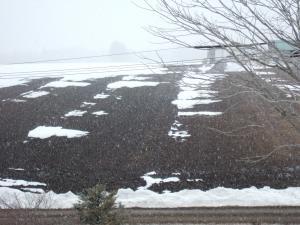 090328雪