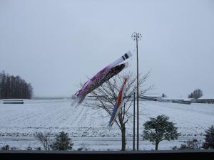 090415雪