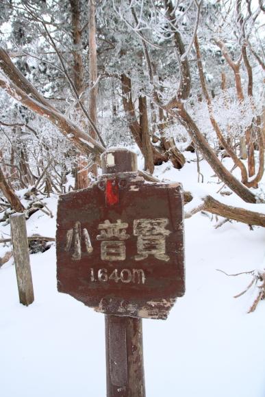 201112110030.jpg
