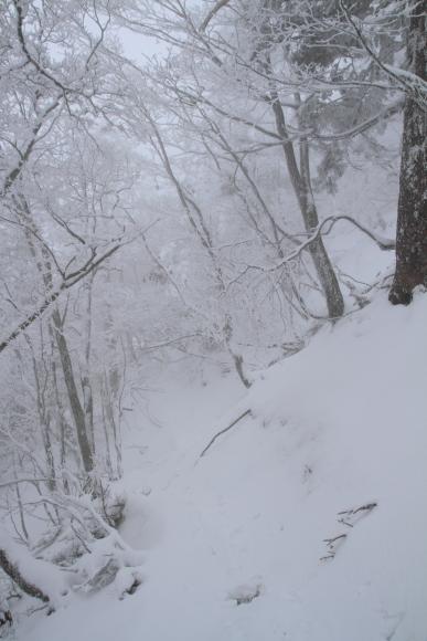 201112110033.jpg