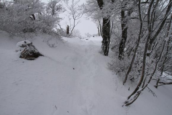 201112110037.jpg