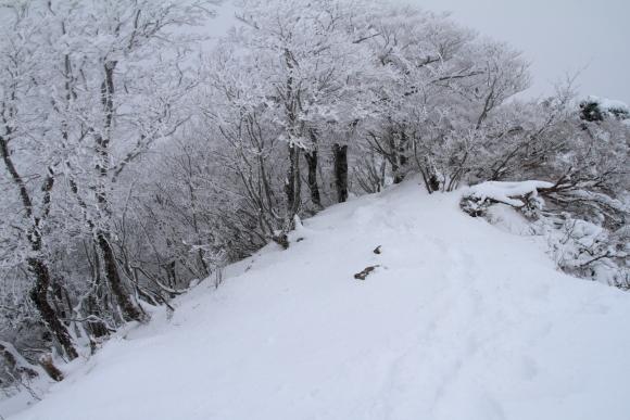 201112110039.jpg