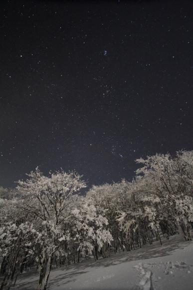 2011_1231_0073.jpg