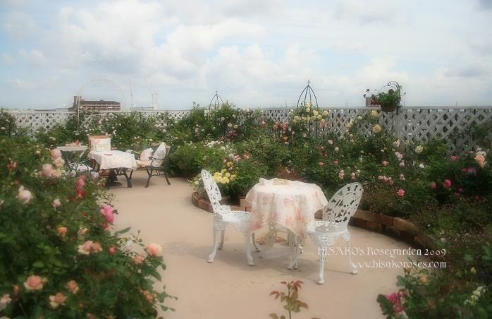 Roofgarden0512