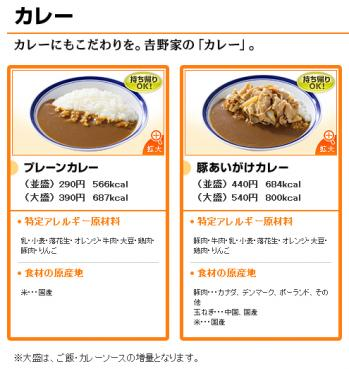 090327_yoshinoya_curry.jpg