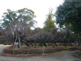 熊本市内4