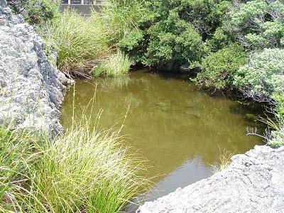 目洗いの池
