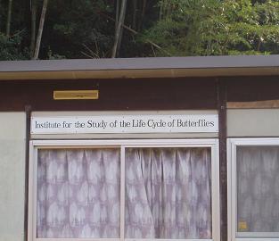 蝶々さんの研究所??