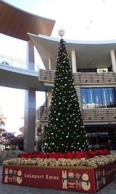 ららぽーと横浜のツリー