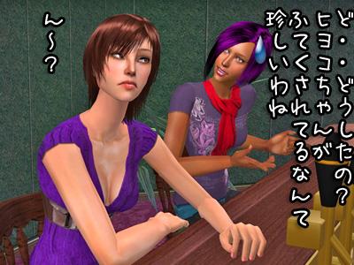 sim2009119_020.jpg