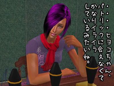 sim2009119_190.jpg