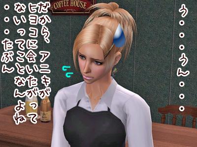 sim2009119_220.jpg