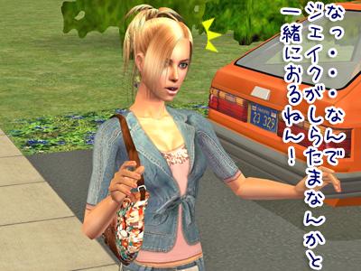 sims2_2009214_030.jpg