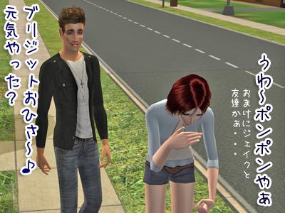 sims2_2009214_040.jpg