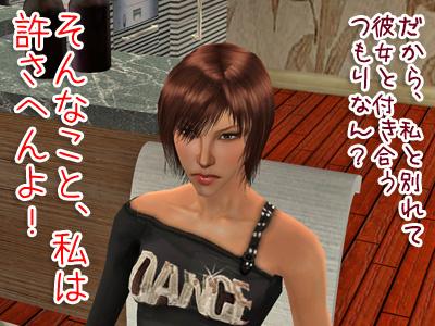 sims2_2009225_330.jpg