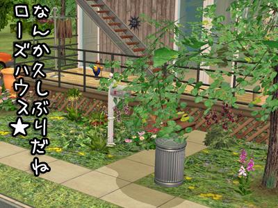 sims2_2009319153216_1000.jpg