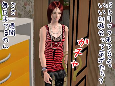 sims2_2009319153216_1100.jpg