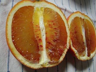 s-ブラッドオレンジ