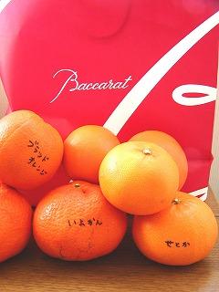 s-オレンジ2