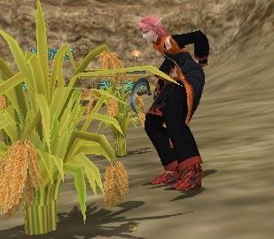 農作業なんぞやらねばならんのだ…