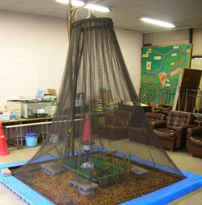 ホタルの教室1