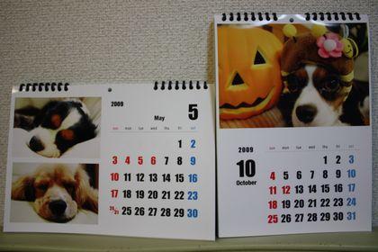 2009カレンダー4