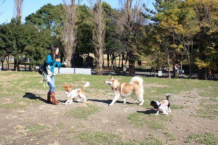 水元公園オフ会2