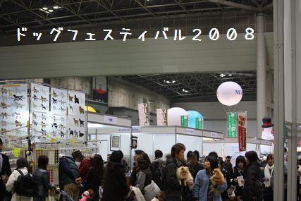 ドッグフェスティバル2008-00