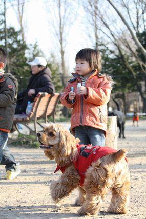 水元公園にて6
