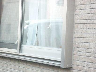 窓辺に潜むわんこ