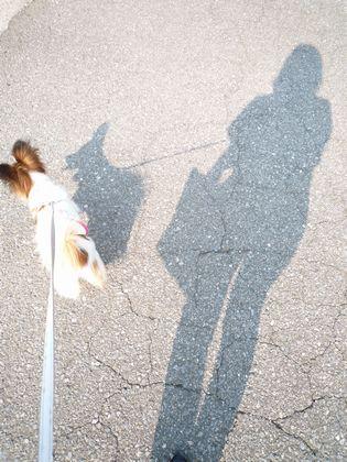 ミラノと散歩