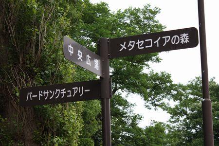 公園 番外編