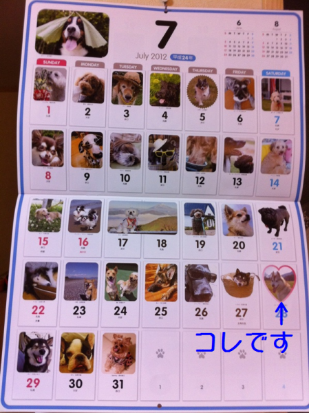calendar_jl_2011