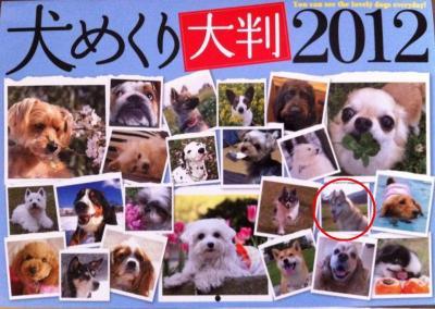 calendar_cover_12