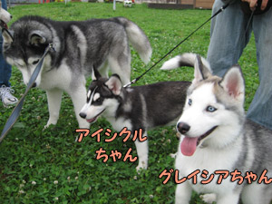 02-2009-08-09-007.jpg