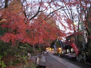 深大寺の参道