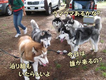05-2009-08-09-022.jpg