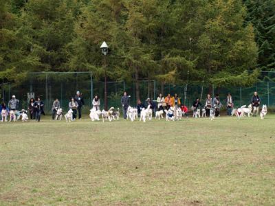 05-2009-10-11-022.jpg