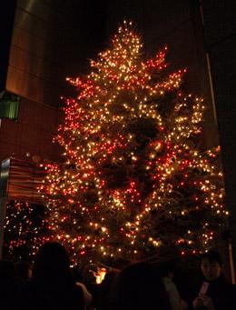 ミキモトのツリー