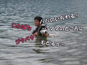 09-08-09-218.jpg