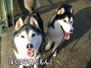 7-02-14-044_20090216103625.jpg
