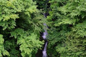 大水沢の滝
