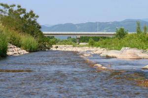 ここで川遊び