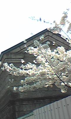 Image352.jpg