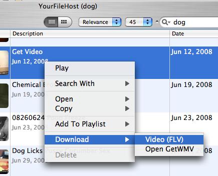 YourfilehostからFLVファイルをダウンロード