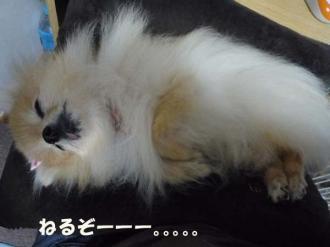 美容には睡眠よね。