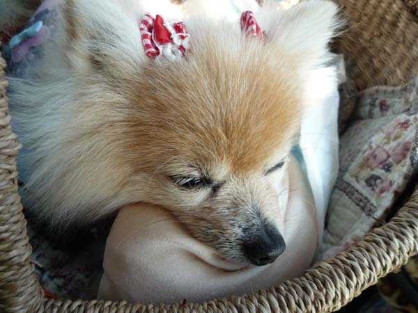 枕使うんだよ。