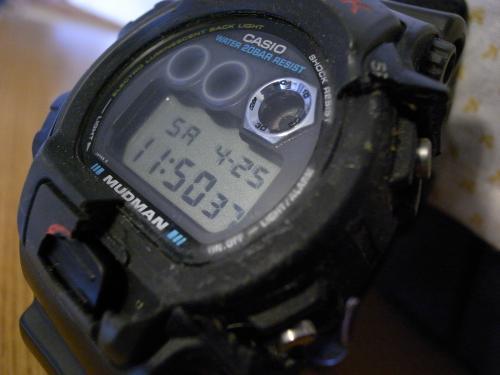R0010170_convert_20090425123314.jpg
